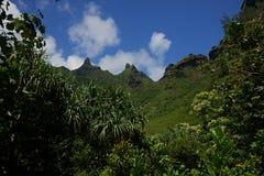 Picos de la costa de NaPali Fotografía de archivo