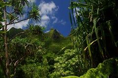 Picos de la costa de NaPali Fotos de archivo
