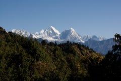 Picos de la nieve Imagen de archivo