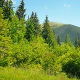 Picos de montaña contra el cielo azul imagen de archivo