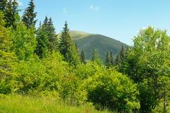 picos de montaña contra el cielo azul imágenes de archivo libres de regalías
