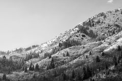 Picos de montaña de Wasatch en Utah septentrional en el invierno Imágenes de archivo libres de regalías