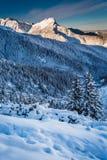 Picos de montaña en el amanecer del invierno Foto de archivo libre de regalías