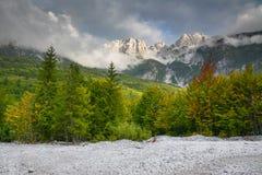 Picos de montaña en las nubes y el bosque imagen de archivo