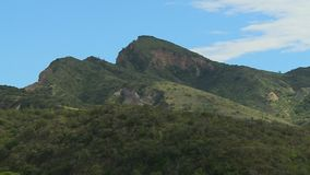 Picos de montaña herbosos metrajes
