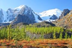 Picos de montaña y bosque del alerce imagenes de archivo