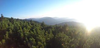 Picos de montanha com o pinho de montanha coberto de vegetação Fotografia de Stock