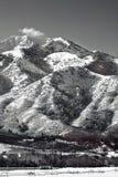 Picos de montanha de Wasatch em Utá do norte no inverno Imagem de Stock