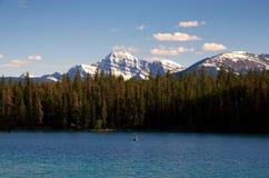 Picos de montanha e tampões da neve Fotos de Stock