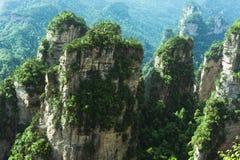 Picos de montanha em Zhangjiajie, China Imagens de Stock Royalty Free