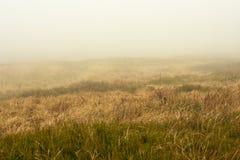 Picos de montanha na névoa e nas nuvens conduzidas rapidamente afastado pelo vento Parque nacional de Bieszczady foto de stock royalty free