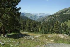 Colorado 4 Fotografia de Stock Royalty Free