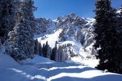 Picos del invierno Imagenes de archivo