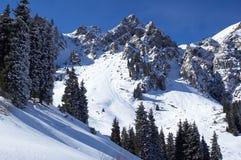 Picos del invierno Fotos de archivo libres de regalías