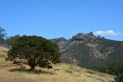 Picos del parque nacional de los pináculos altos con el roble imagen de archivo