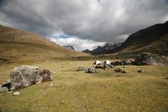 Picos e montanhas da neve em Peru fotografia de stock
