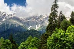 Picos nevado Foto de Stock
