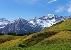 Picos nevados y prados verdes en las montan@as suizas Imágenes de archivo libres de regalías