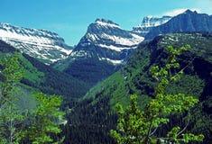Picos y nieve rocosos del verano foto de archivo libre de regalías