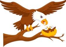 Cute eagle cartoon up tree Stock Photo