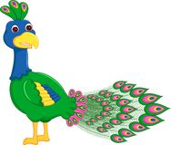 Cute peacock cartoon standing with look up and smiling Stock Photos