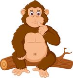 Funny gorilla cartoon sitting confused on wooden Royalty Free Stock Images