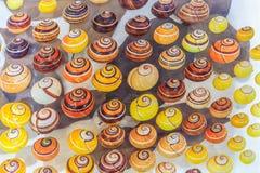 Picta de picta de Polymita Image libre de droits
