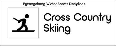 Pictogram die Dwars het Ski?en van het Land discipline van wintersporten afschilderen royalty-vrije illustratie