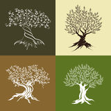 Pictograma do conceito de projeto do logotipo da ilustração Imagens de Stock