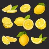 Pictograminzameling van gesneden en gehele citroenen Organische citrusvruchten Het natuurlijke en gezonde eten Gedetailleerde vec royalty-vrije illustratie
