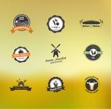 Pictogrammen, de etiketten en de kentekens van het landbouwbedrijfvoedsel de vector Stock Foto's