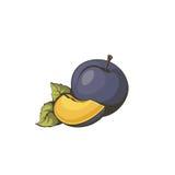 Pictogrampruim door natuurvoeding Vector illustratie Royalty-vrije Stock Afbeeldingen