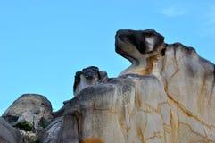 Pictograms stenar som hundhuvudet Arkivfoto