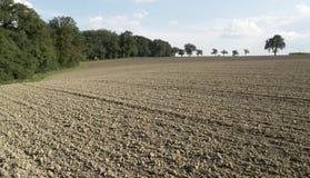 Pictoral ha arato il campo e gli alberi Fotografie Stock Libere da Diritti
