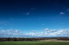 Pictoresque landscape. Nature scenery under sky, pictoresque landscape looking across to a forest in the distant Stock Photos