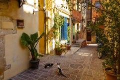 Pictoresque medelhavs- gata med trappa och blomkrukor, Chania, ö av Kreta, Grekland Royaltyfri Bild