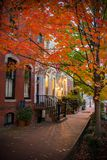 Pictoresque Street with a Red Leaves Tree in Autumn in Georgetown.