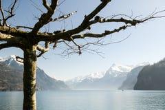 Pictoresque view on Lake Lucerne near Brunnen. Switzerland Stock Images