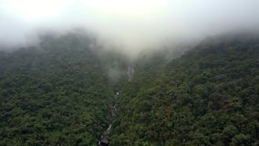 Aerial View above Fast River and Mountain in Background. Pictorial aerial view above fast river in tropical woods and mountain covered with deep fog in stock video footage