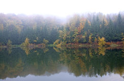 Pictorial, colorful background of an autumn fog on the lake Royalty Free Stock Photography