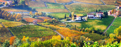 Pictorial countryside and beautiful vineyards of Piemonte in aut Stock Image