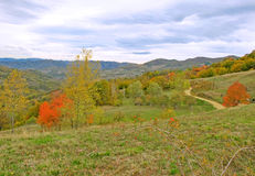 Pictorial fall mountain landscape Stock Images