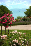 Pictorial lake shore gstadt and chiemsee lake, bavaria. Pictorial lakeside promenade with roses at gstadt and chiemsee lake, bavaria Stock Photography