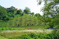 Pictorial landscape of country houses on the hill, Serbia. Pictorial summer landscape of mountain, country houses on the top of the hill, bee hives and green Royalty Free Stock Image