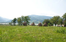 Pictorial landscape of hayricks at the meadow, Serbia. Pictorial summer landscape of hayricks at the meadow and village houses at the coast of Drina river in Royalty Free Stock Images