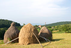 Pictorial landscape of hayricks at the mountain meadow, Serbia. Pictorial summer landscape of hayricks at the mountain meadow and village houses in the Royalty Free Stock Photo