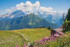 Pictorial mountain landscape swiss alps. view from schynige plat royalty free stock photos