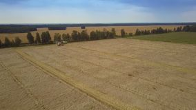 Panoramic view gold wheat field with combines. Pictorial panoramic view gold wheat field with harvesting combines against clear blue sky on summer day stock video footage