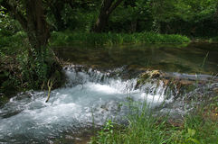 Pictorial river source with cascade in the wood, Serbia Royalty Free Stock Photo