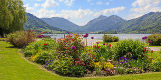 Pictorial seafront schliersee, bavarian alps. Pictorial seafront of schliersee lake, flower beds and bavarian alps Stock Photo